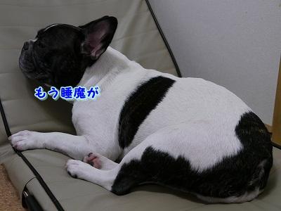 疲れた (5)