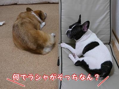 疲れた (3)