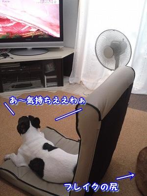 何と (3)