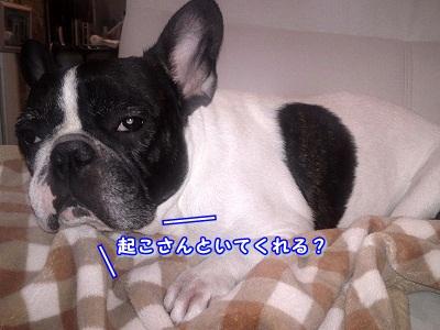 寒い (5)