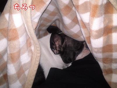 さむい (2)