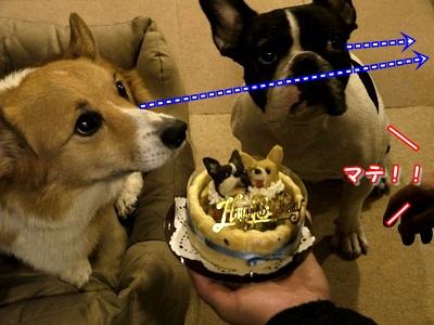 誕生日 (8)