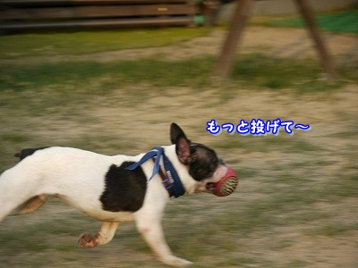 ran  (9)