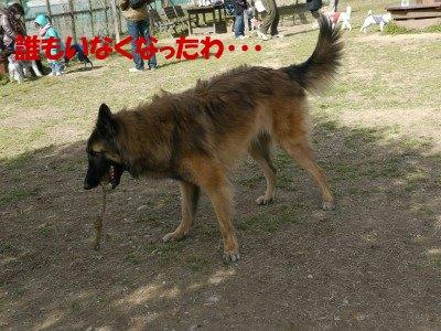 s-P1000924.jpg