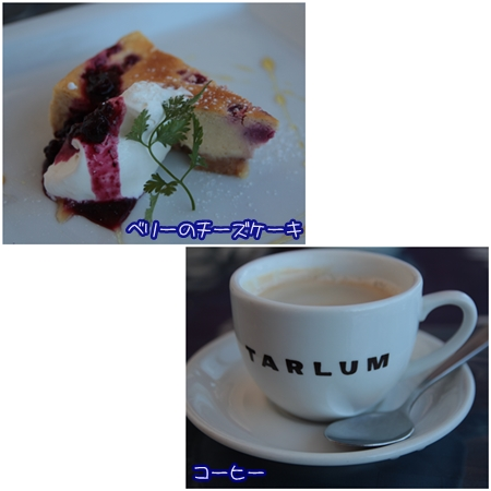 tarlum2_20131230082749bde.jpg