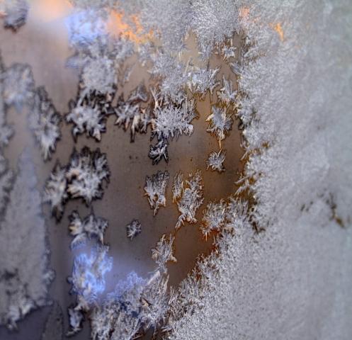 DPP_霜の花0001
