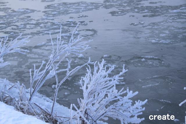 DPPー055樹氷0001