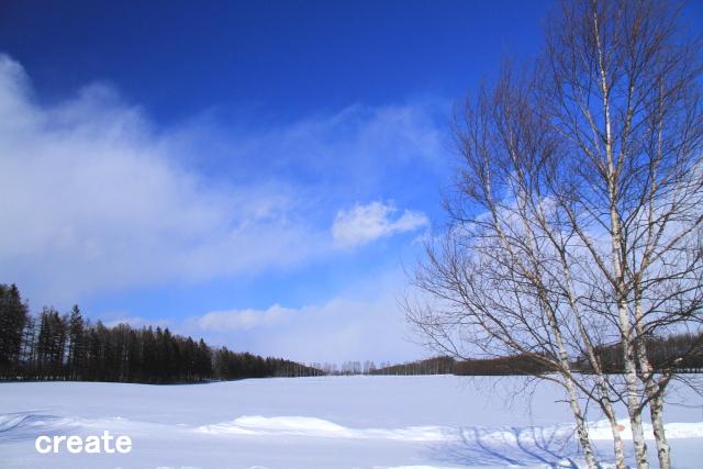 DPPー079 雪原0001