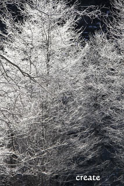 DPPー26931日樹氷アップ 0001