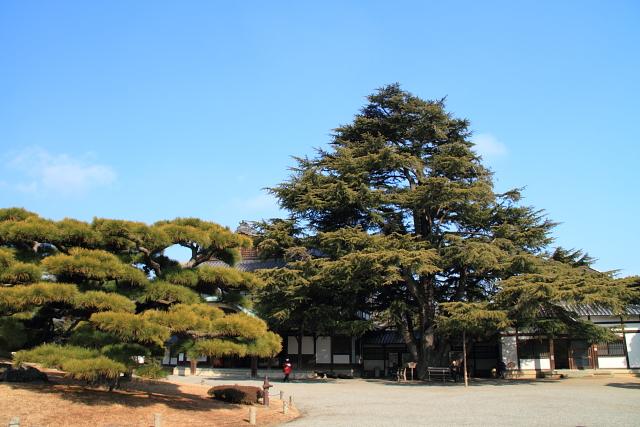 DPP0 668 053 香川栗林公園0001