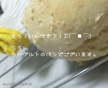 image767760.jpg