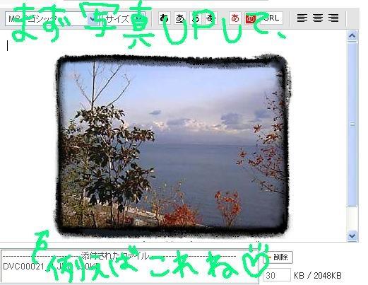 image8091436.jpg