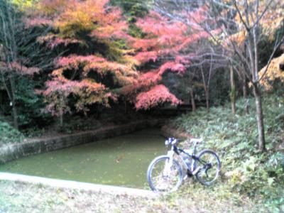 006_convert_20101129181936.jpg