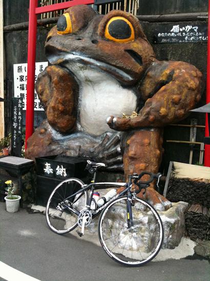 gamacycle.jpg