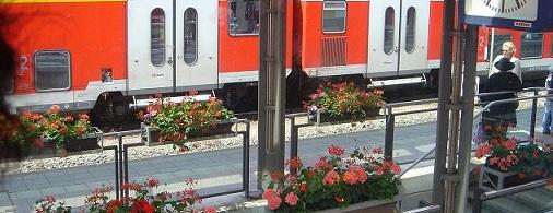 2009ヨーロッパ1 187a