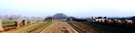 北宋永裕陵石彫刻像01