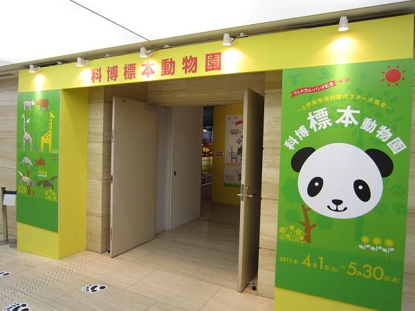 展示室入口_110424