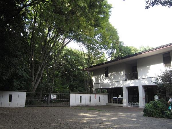 自然教育園_110917