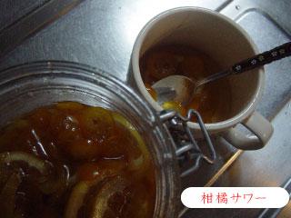 柑橘サワー
