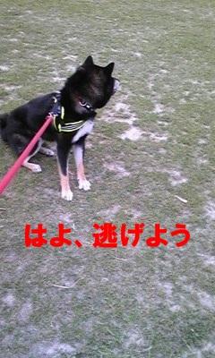 100601_183601.jpg