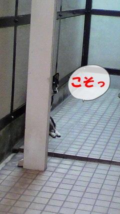 2010110213590000.jpg
