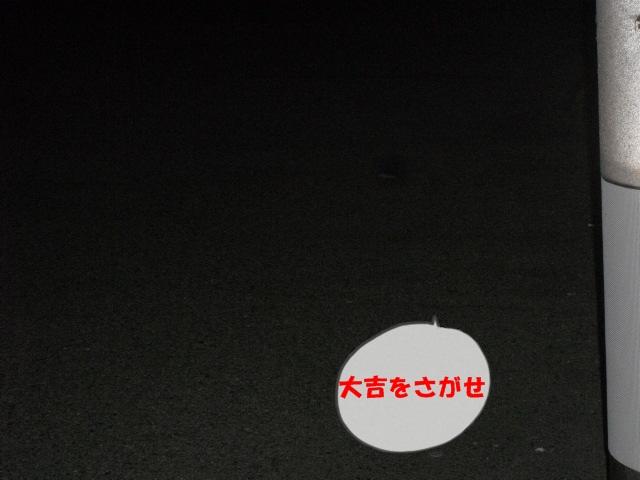 CIMG3380.jpg