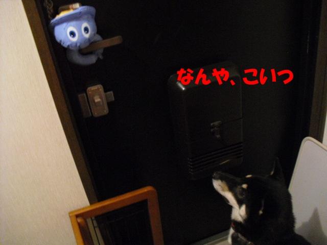 CIMG3501.jpg