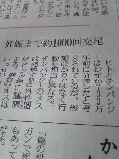 114_20100324230755.jpg