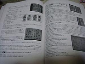DSC06983.jpg