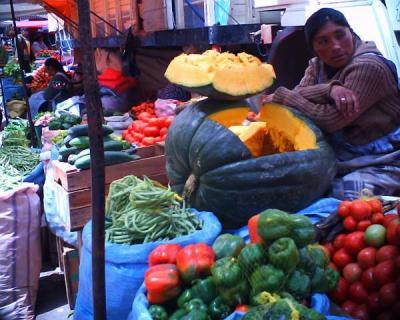 野菜屋  by VQ1015 R2