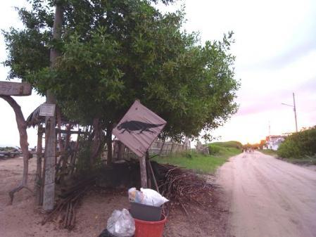 イグアナの看板