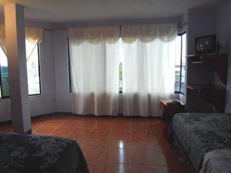 イサベラ島のホテル