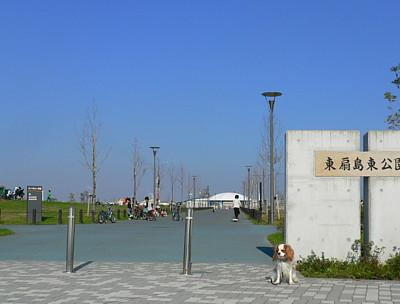 P1100602.jpg