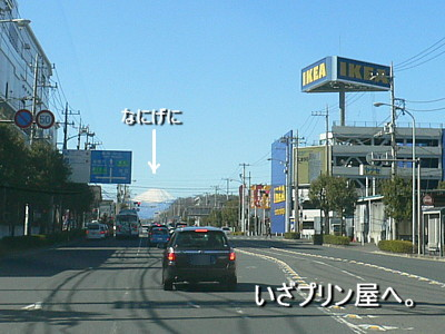 P1120217.jpg