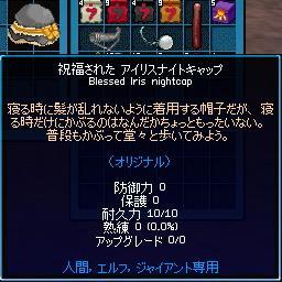 mabinogi_2010_01_20_003.jpg