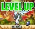 Maple100127_010624.jpg