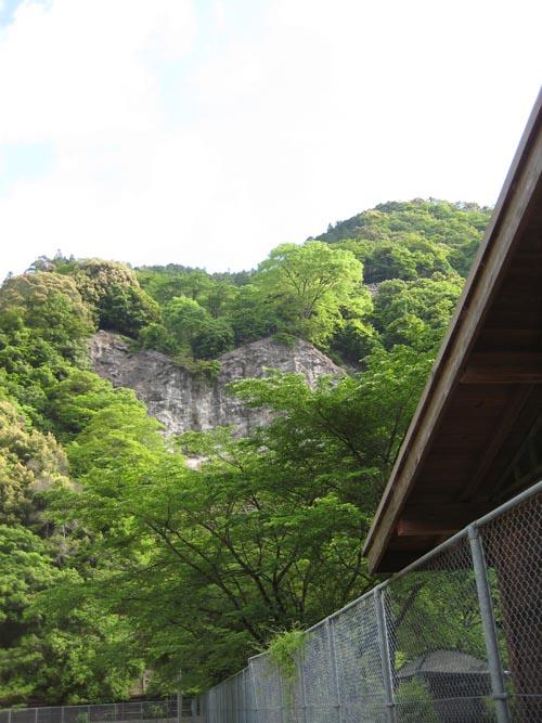 下北山キャンプ場の山