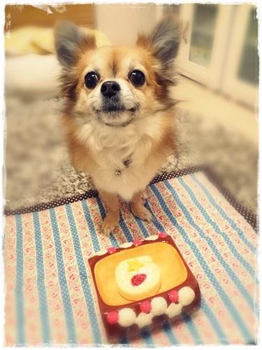 1302loco cake