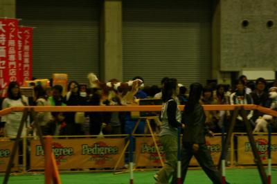2009.12 フラボ大阪大会 043