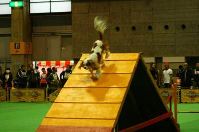 2009.12 フラボ大阪大会 027