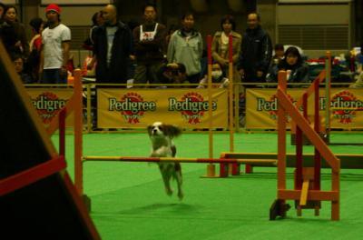 2009.12 フラボ大阪大会 025