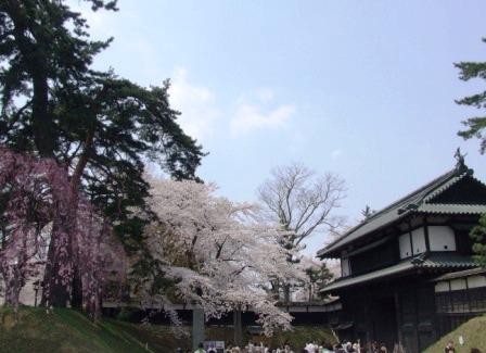 桜祭り2010-1