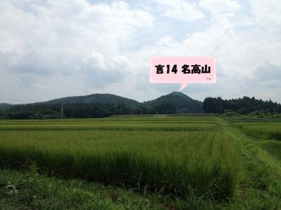7tk8m_01.jpg
