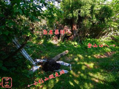 snb9089e_02.jpg