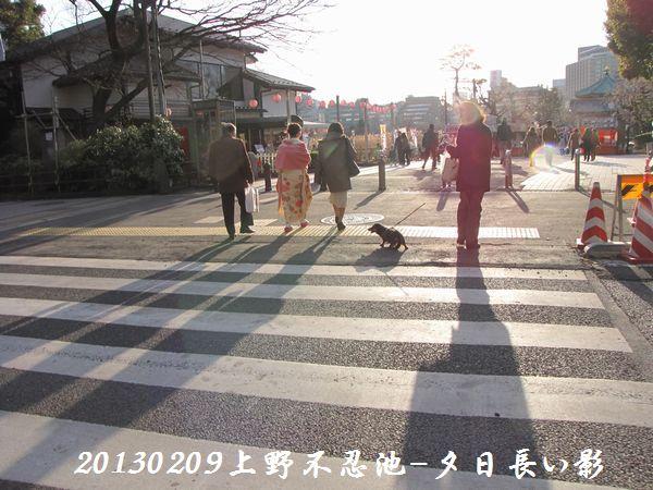 0209shinobazu01.jpg