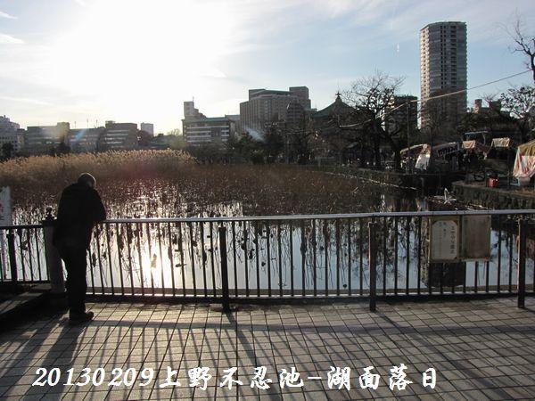 0209shinobazu03.jpg