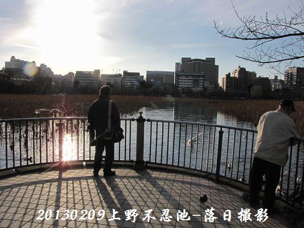 0209shinobazu07.jpg