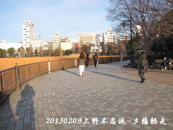 0209shinobazu19.jpg
