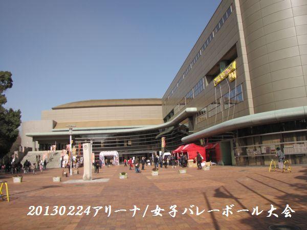 0224areena04.jpg