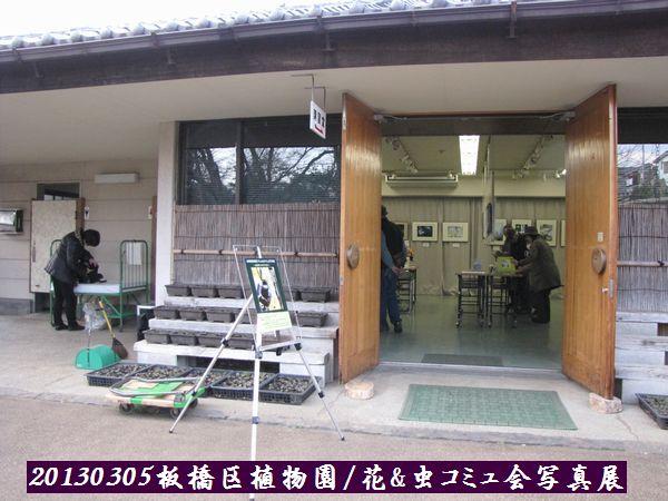 0305akatsuka03.jpg